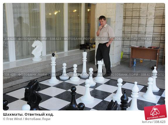 Шахматы. Ответный ход., эксклюзивное фото № 338623, снято 25 июня 2008 г. (c) Free Wind / Фотобанк Лори