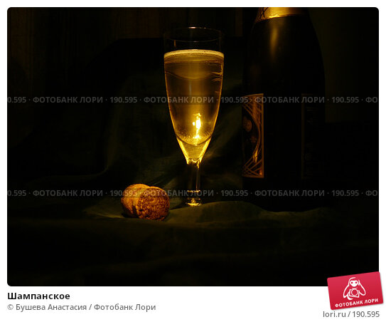 Шампанское, фото № 190595, снято 9 ноября 2007 г. (c) Бушева Анастасия / Фотобанк Лори