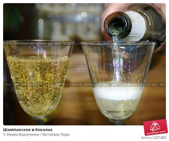 Шампанское в бокалах, фото № 227803, снято 27 марта 2017 г. (c) Ирина Борсученко / Фотобанк Лори