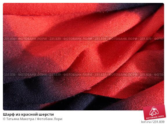 Шарф из красной шерсти, фото № 231839, снято 24 февраля 2008 г. (c) Татьяна Макотра / Фотобанк Лори