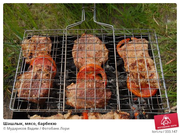 Купить «Шашлык, мясо, барбекю», фото № 333147, снято 15 июня 2008 г. (c) Мударисов Вадим / Фотобанк Лори