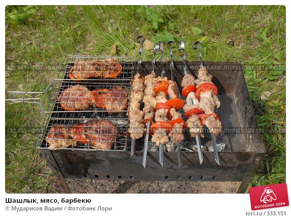 Шашлык, мясо, барбекю, фото № 333151, снято 15 июня 2008 г. (c) Мударисов Вадим / Фотобанк Лори