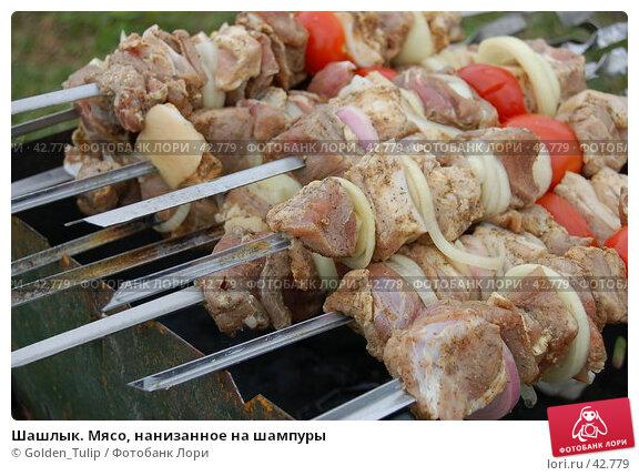 Шашлык. Мясо, нанизанное на шампуры, фото № 42779, снято 12 мая 2007 г. (c) Golden_Tulip / Фотобанк Лори