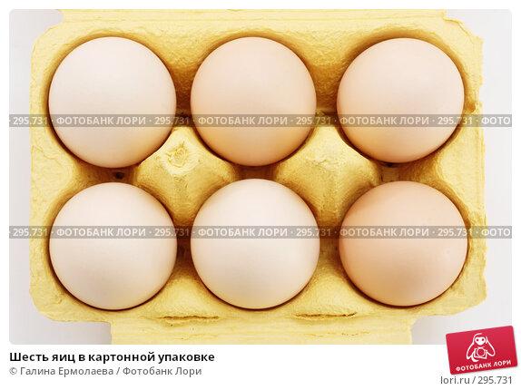 Шесть яиц в картонной упаковке, фото № 295731, снято 21 мая 2008 г. (c) Галина Ермолаева / Фотобанк Лори