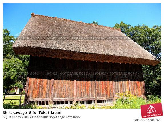 Купить «Shirakawago, Gifu, Tokai, Japan», фото № 14901023, снято 19 июня 2018 г. (c) age Fotostock / Фотобанк Лори