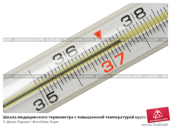Купить «Шкала медицинского термометра с повышенной температурой крупным планом», фото № 8433691, снято 16 июля 2015 г. (c) Денис Ларкин / Фотобанк Лори
