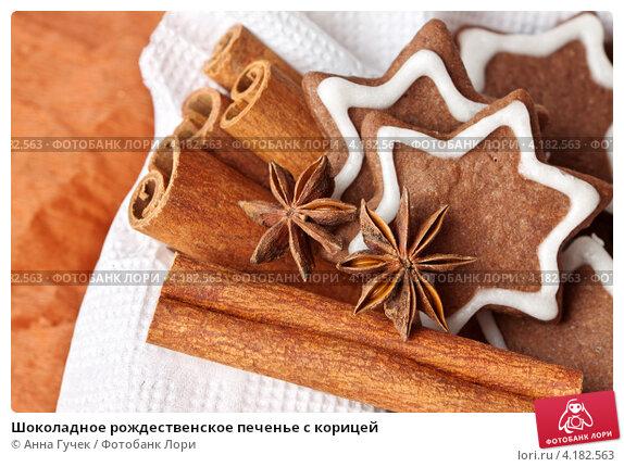 Купить «Шоколадное рождественское печенье с корицей», фото № 4182563, снято 23 декабря 2012 г. (c) Анна Гучек / Фотобанк Лори