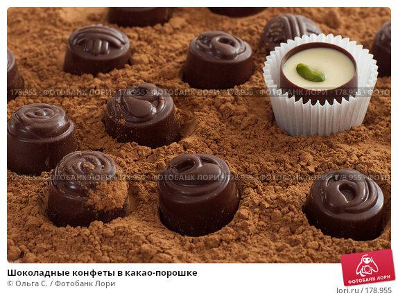 Шоколадные конфеты в какао-порошке, фото № 178955, снято 19 апреля 2007 г. (c) Ольга С. / Фотобанк Лори