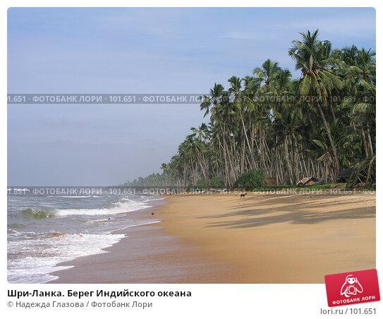 Шри-Ланка. Берег Индийского океана, фото № 101651, снято 26 ноября 2003 г. (c) Надежда Глазова / Фотобанк Лори