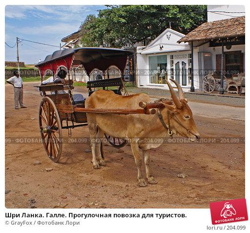 Шри Ланка. Галле. Прогулочная повозка для туристов., фото № 204099, снято 8 января 2008 г. (c) GrayFox / Фотобанк Лори