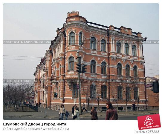 Шумовский дворец город Чита, фото № 267363, снято 19 апреля 2008 г. (c) Геннадий Соловьев / Фотобанк Лори