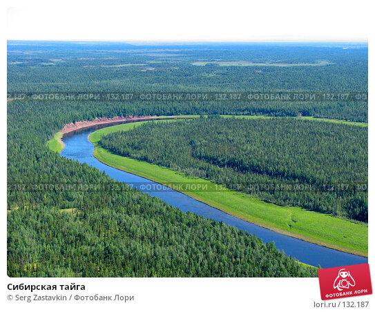 Сибирская тайга, фото № 132187, снято 5 июля 2004 г. (c) Serg Zastavkin / Фотобанк Лори
