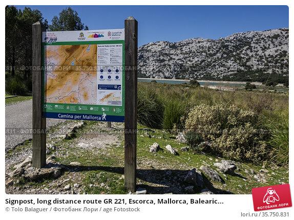 Signpost, long distance route GR 221, Escorca, Mallorca, Balearic... Стоковое фото, фотограф Tolo Balaguer / age Fotostock / Фотобанк Лори