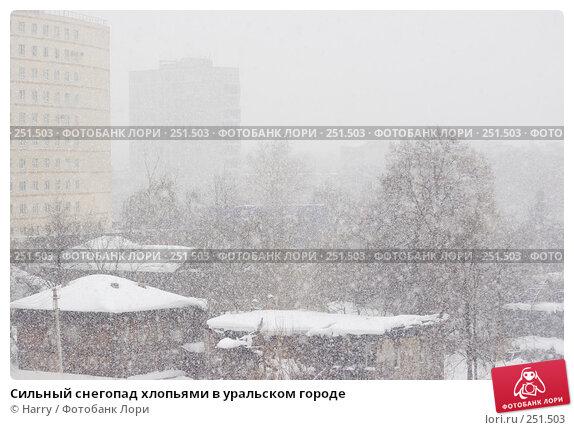 Сильный снегопад хлопьями в уральском городе, фото № 251503, снято 2 марта 2008 г. (c) Harry / Фотобанк Лори