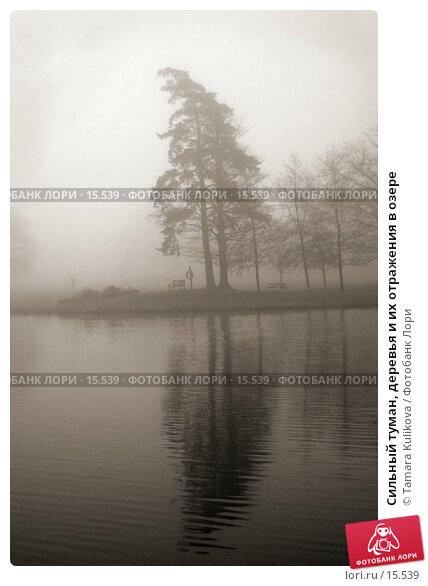Сильный туман, деревья и их отражения в озере, фото № 15539, снято 21 декабря 2006 г. (c) Tamara Kulikova / Фотобанк Лори