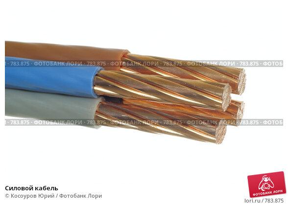 Купить «Силовой кабель», фото № 783875, снято 5 ноября 2008 г. (c) Косоуров Юрий / Фотобанк Лори