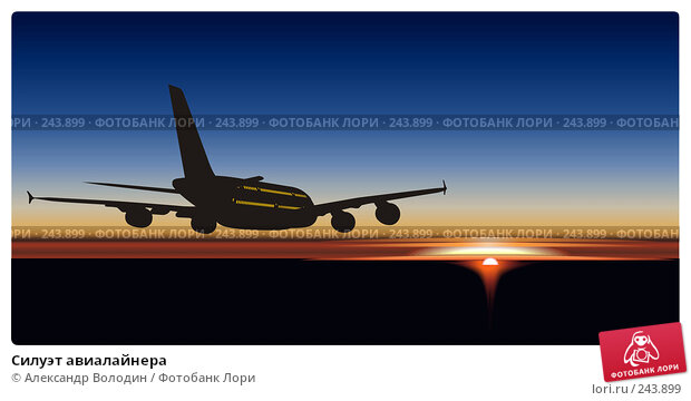 Силуэт авиалайнера, иллюстрация № 243899 (c) Александр Володин / Фотобанк Лори