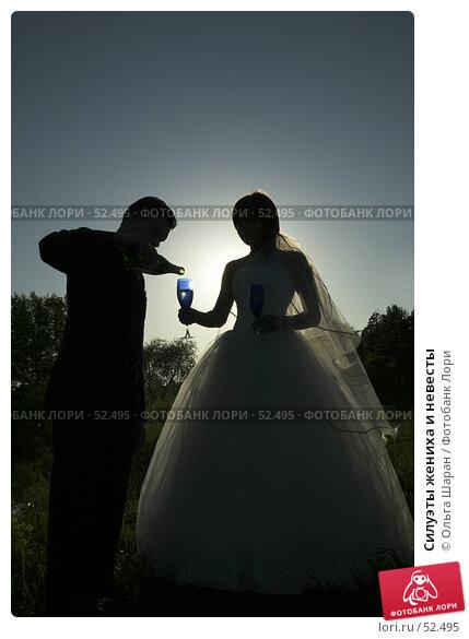 Купить «Силуэты жениха и невесты», фото № 52495, снято 2 июня 2007 г. (c) Ольга Шаран / Фотобанк Лори