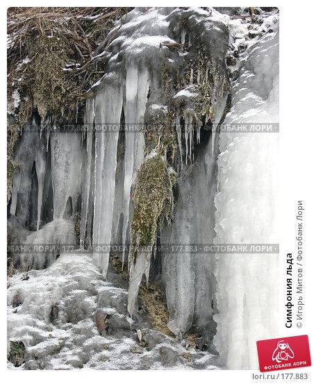 Купить «Симфония льда», фото № 177883, снято 10 января 2008 г. (c) Игорь Митов / Фотобанк Лори