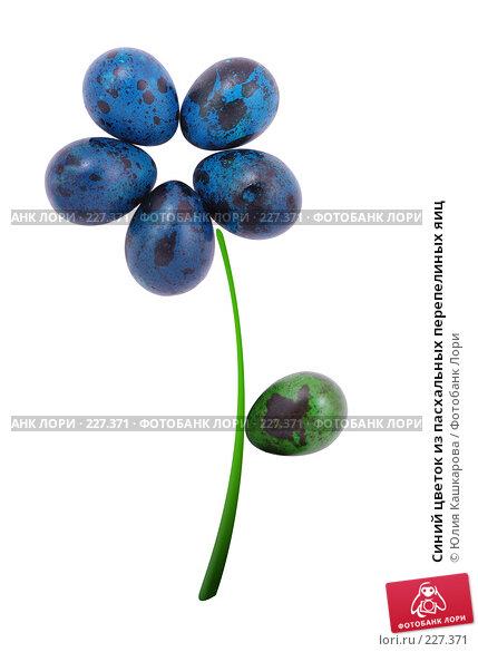 Синий цветок из пасхальных перепелиных яиц, фото № 227371, снято 15 марта 2008 г. (c) Юлия Кашкарова / Фотобанк Лори
