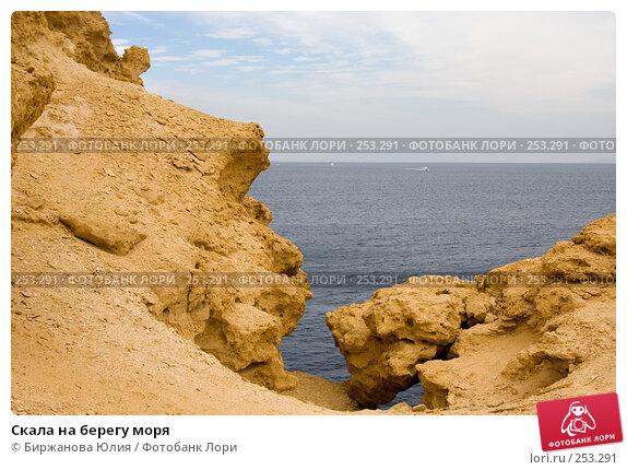 Скала на берегу моря, фото № 253291, снято 2 января 2008 г. (c) Биржанова Юлия / Фотобанк Лори