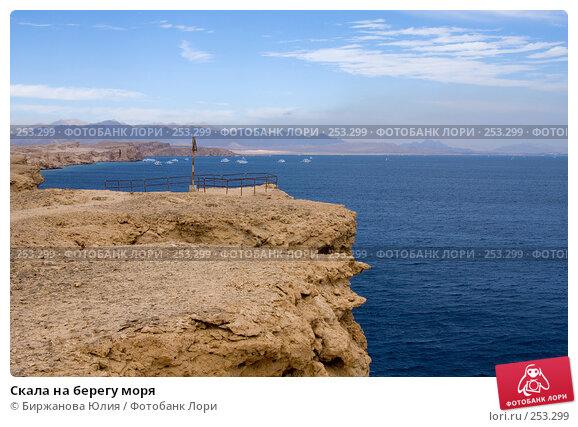Скала на берегу моря, фото № 253299, снято 2 января 2008 г. (c) Биржанова Юлия / Фотобанк Лори