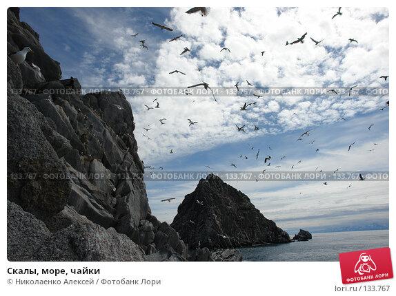 Скалы, море, чайки, фото № 133767, снято 27 июня 2006 г. (c) Николаенко Алексей / Фотобанк Лори