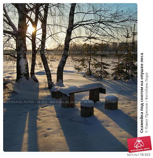 Скамейка под снегом на опушке леса, фото № 18923, снято 5 февраля 2007 г. (c) Павел Преснов / Фотобанк Лори
