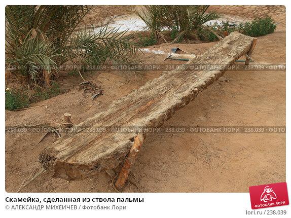 Скамейка, сделанная из ствола пальмы, фото № 238039, снято 24 февраля 2008 г. (c) АЛЕКСАНДР МИХЕИЧЕВ / Фотобанк Лори
