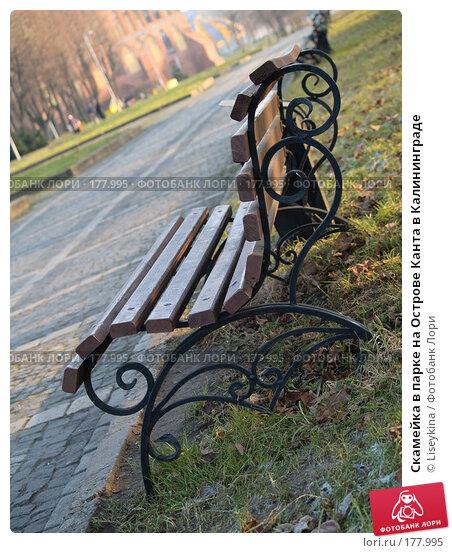 Скамейка в парке на Острове Канта в Калининграде, фото № 177995, снято 30 декабря 2007 г. (c) Liseykina / Фотобанк Лори