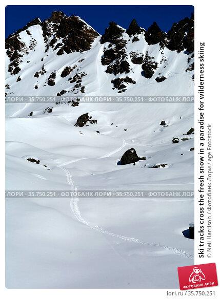 Ski tracks cross the fresh snow in a paradise for wilderness skiing. Стоковое фото, фотограф Neil Harrison / age Fotostock / Фотобанк Лори