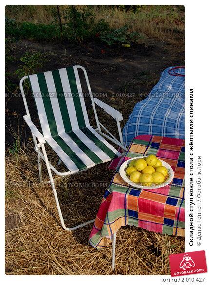 Складной стул возле стола с жёлтыми сливами. Стоковое фото, фотограф Денис Гоппен / Фотобанк Лори