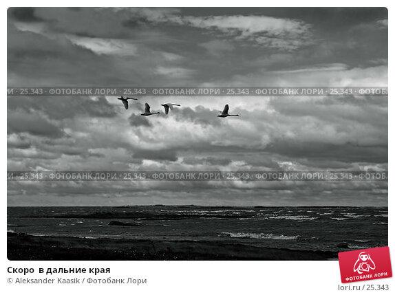 Скоро  в дальние края, фото № 25343, снято 25 октября 2016 г. (c) Aleksander Kaasik / Фотобанк Лори