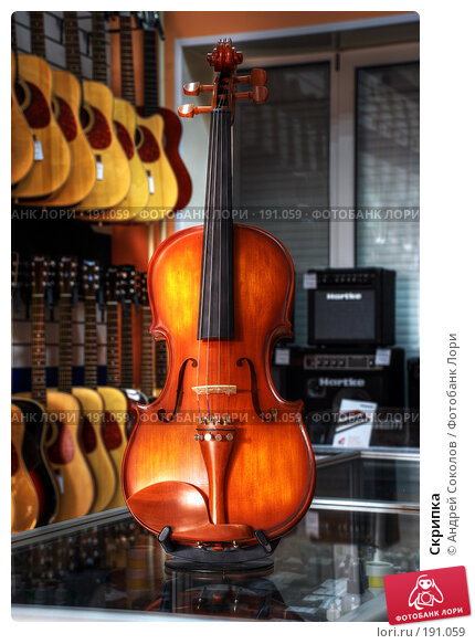Купить «Скрипка», фото № 191059, снято 30 января 2008 г. (c) Андрей Соколов / Фотобанк Лори