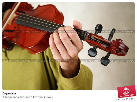 Скрипка, фото № 272771, снято 7 апреля 2008 г. (c) Морозова Татьяна / Фотобанк Лори