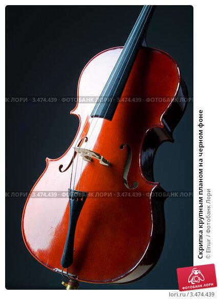 Купить «Скрипка крупным планом на черном фоне», фото № 3474439, снято 18 октября 2011 г. (c) Elnur / Фотобанк Лори
