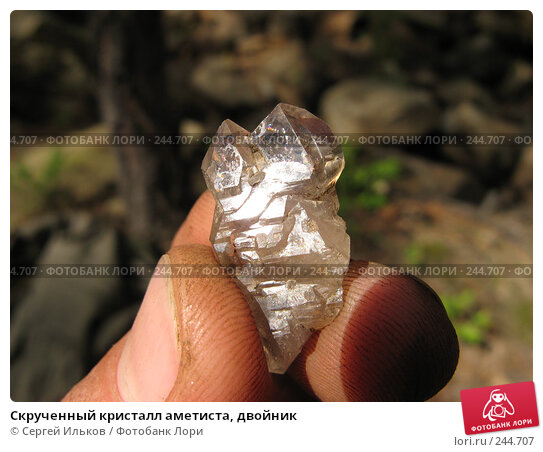 Скрученный кристалл аметиста, двойник, фото № 244707, снято 8 июля 2007 г. (c) Сергей Ильков / Фотобанк Лори