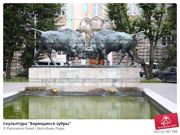 "Скульптура ""Борющиеся зубры"", фото № 87199, снято 7 сентября 2007 г. (c) Parmenov Pavel / Фотобанк Лори"