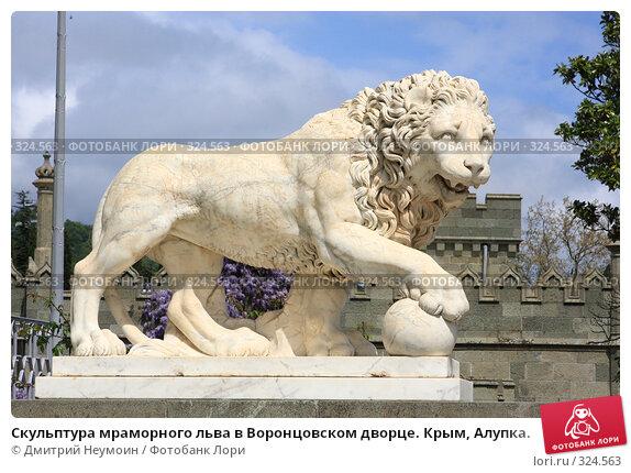 Скульптура мраморного льва в Воронцовском дворце. Крым, Алупка., эксклюзивное фото № 324563, снято 29 апреля 2008 г. (c) Дмитрий Неумоин / Фотобанк Лори