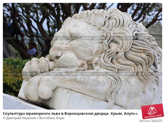 Скульптура мраморного льва в Воронцовском дворце. Крым, Алупка., эксклюзивное фото № 324571, снято 29 апреля 2008 г. (c) Дмитрий Неумоин / Фотобанк Лори