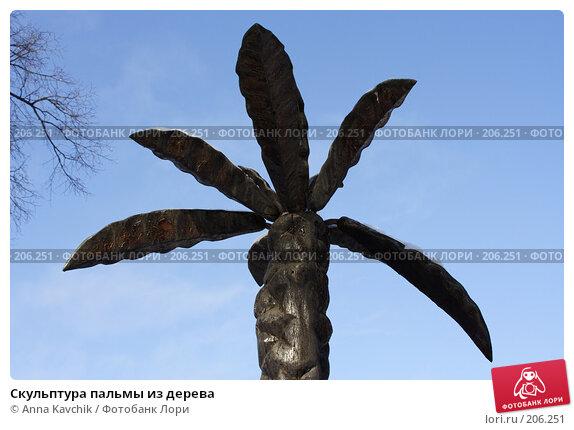 Скульптура пальмы из дерева, фото № 206251, снято 9 февраля 2008 г. (c) Anna Kavchik / Фотобанк Лори