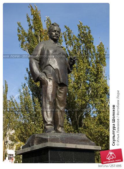 Скульптура Шолохов, фото № 257095, снято 4 ноября 2005 г. (c) Илья Лиманов / Фотобанк Лори
