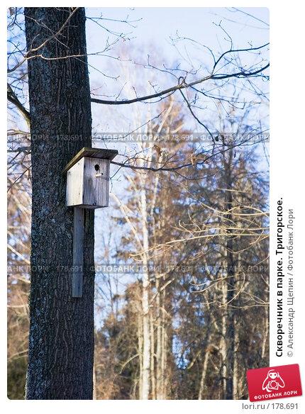 Скворечник в парке. Тригорское., эксклюзивное фото № 178691, снято 5 января 2008 г. (c) Александр Щепин / Фотобанк Лори
