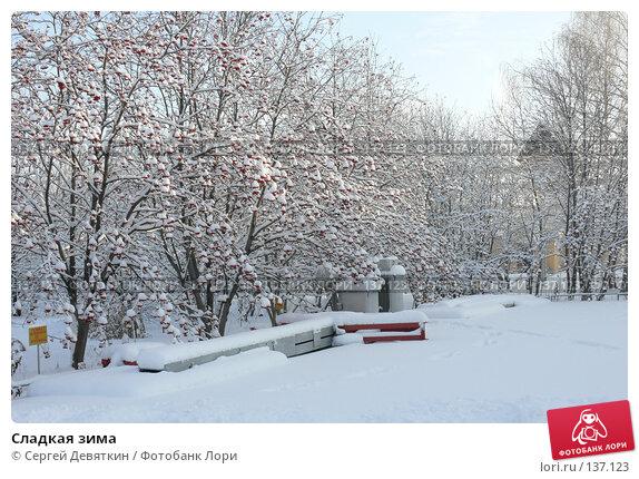 Купить «Сладкая зима», фото № 137123, снято 4 декабря 2007 г. (c) Сергей Девяткин / Фотобанк Лори