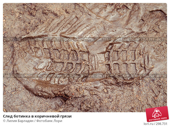 След ботинка в коричневой грязи, фото № 298731, снято 28 марта 2008 г. (c) Лилия Барладян / Фотобанк Лори