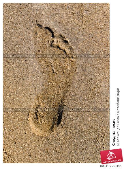 След на песке, фото № 72443, снято 1 июля 2007 г. (c) Александр Fanfo / Фотобанк Лори