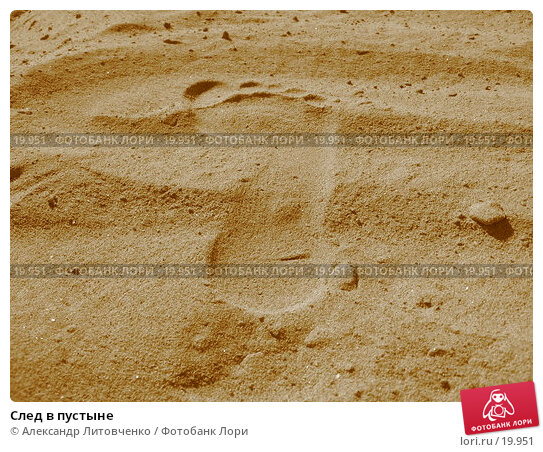 След в пустыне, фото № 19951, снято 11 июля 2006 г. (c) Александр Литовченко / Фотобанк Лори