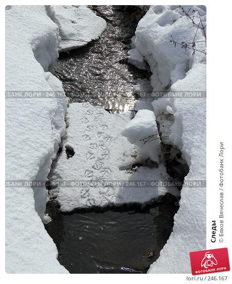 Следы, фото № 246167, снято 22 марта 2008 г. (c) Бяков Вячеслав / Фотобанк Лори