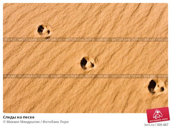 Следы на песке, фото № 309487, снято 13 мая 2008 г. (c) Михаил Мандрыгин / Фотобанк Лори