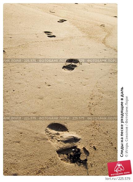 Следы на песке уходящие в даль, фото № 225579, снято 11 марта 2008 г. (c) Игорь Соколов / Фотобанк Лори